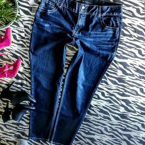 Lane Bryant Jeans Size 20X30 Skinny Ank NWOT